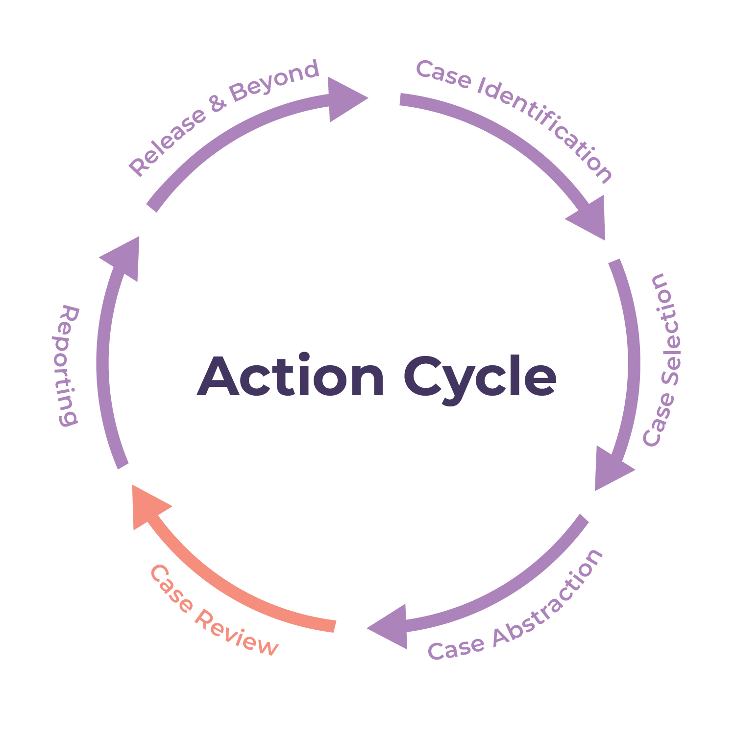 action cycle step 4